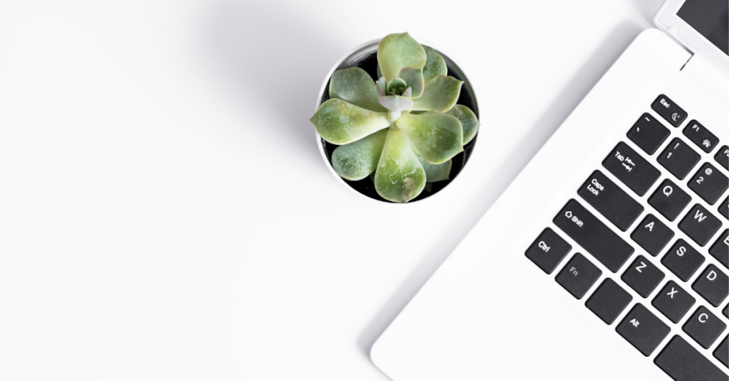 laptop and succulent on white desk